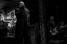 The Damned-2