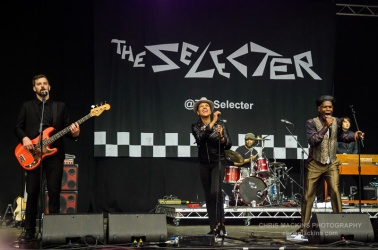 The Selector-2