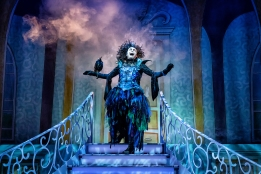 David Leonard as Evil Diva in Sleeping Beauty at York Theatre Royal. Photo Robling Photography